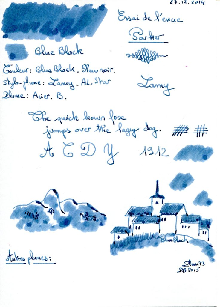 Blue black Ink Parker 001
