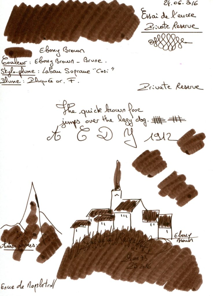 Ebony brown ink Private reserve